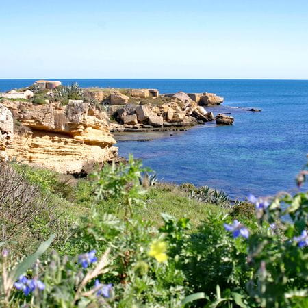 Felsenlandschaft am Meer