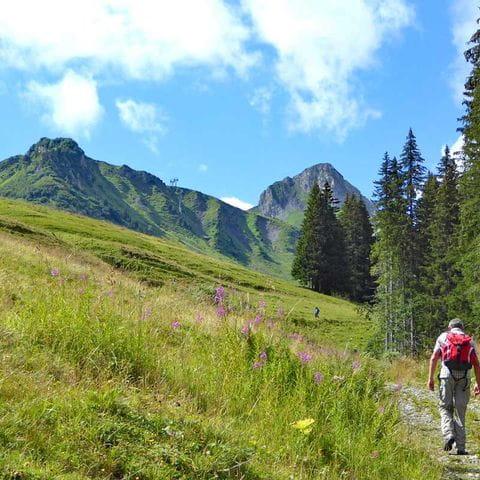 Wanderung in Adelboden