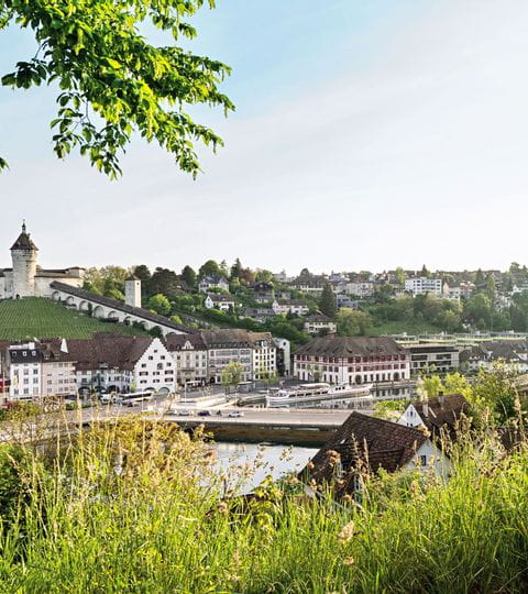 Schaffhausen am Rhein