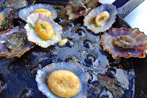 Typisches Gericht auf Madeira: Lapas in der Pfanne
