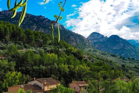 Ausblick von Fornalutx auf die Serra de Tramuntana