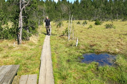 Wandern am Brettlesweg