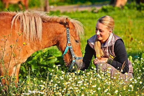 Frau in der Wiese füttert das Pferd