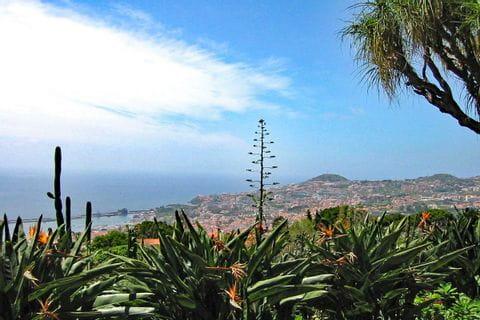 Unberührte Naturlandschaft auf der Blumeninsel Madeira