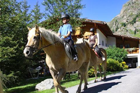 Pferde beim Ausritt in Tirol