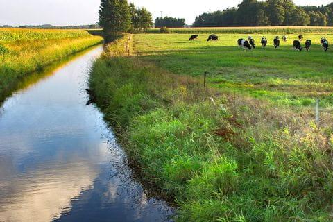 Landschaft entlang der Weser