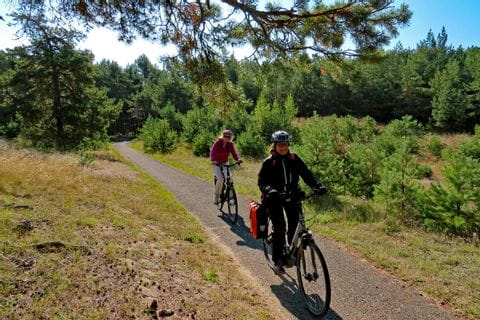 Radler auf Radweg durch den Wald