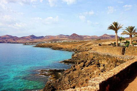 Meeresufer mit Palmen auf Lanzarote