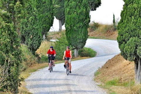 Radfahrer auf Landstraße