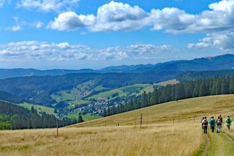 Impressive landscape at the Black Forest