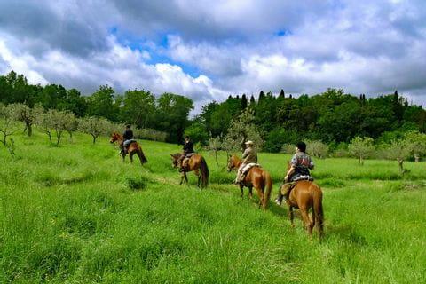 Reitausflug durch die grüne Hügellandschaft in der Toskana