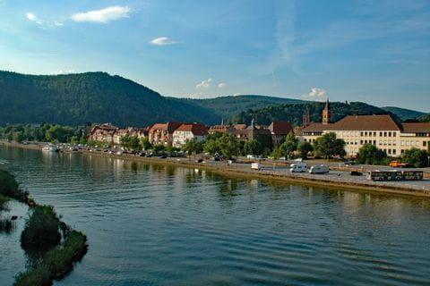 Der Neckar Radweg bei Eberbach