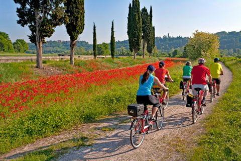 Radgruppe neben Mohnwiese