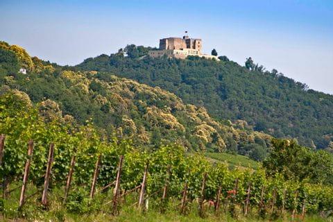 Das Hambacher Schloss hoch über dem Radweg
