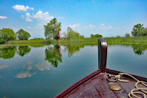 Wanderhighlight Bootsfahrt auf dem Skadarsee