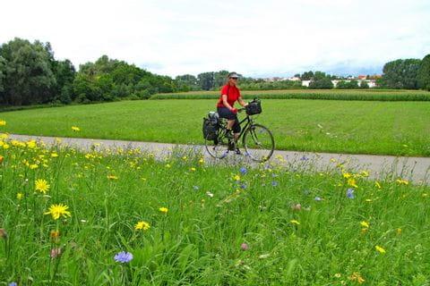 Radfahrer auf dem Neckar Radweg