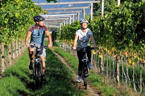 Radfahrer im Weingarten nahe Donaueschingen
