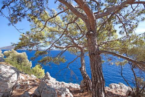 Traumhafter Blick auf das Mittelmeer