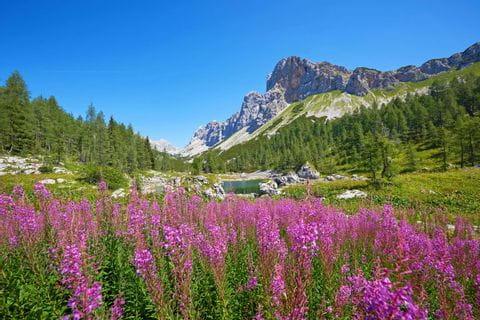 Wandern im Triglav Nationalpark in Slowenien