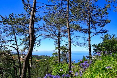 Imposanter Panoramablick auf die Küste Madeiras