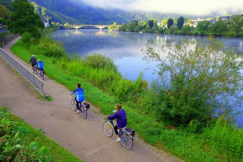 Cycle path along the Mosel