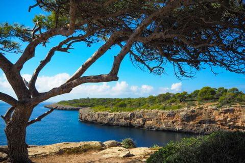 Ausblick auf die Steilküste von der Bucht Cala Pi