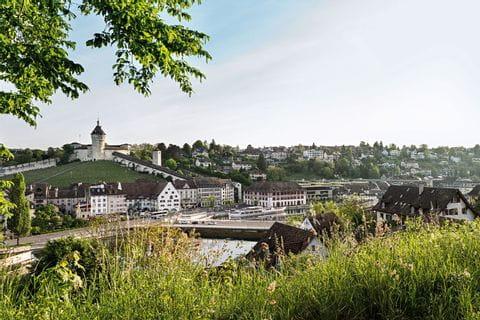60 Via Rhenana Rheinfall