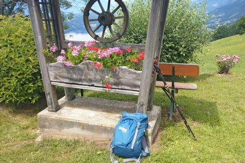 Blumenkasten vor dem Seepanorama Döbriach