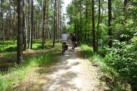 Schöner Waldradweg Richtung Danzig