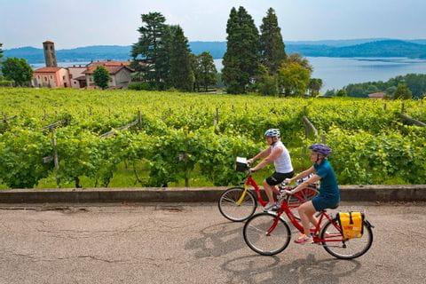 Radfahrer in einem Weingarten am Viverone See