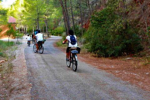 Radfahrer am Radweg