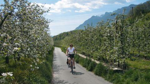 Radreise Brixen