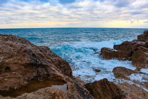 Coast at Castiglioncello with waves