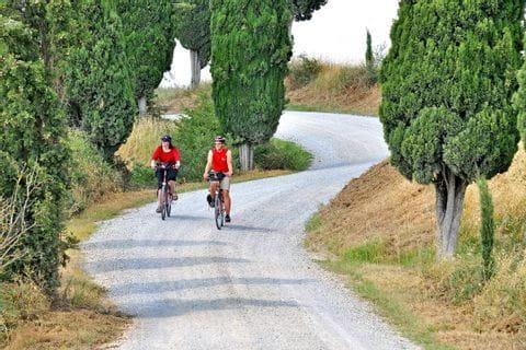 Zwei Radfahrer fahren entlang einer Straße