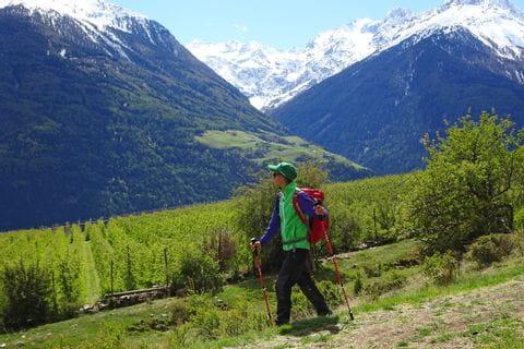Wanderpfad vorbei an schneebedeckten Berggipfeln