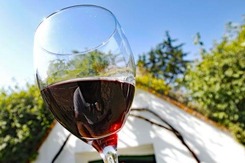 Glas mit Rotwein