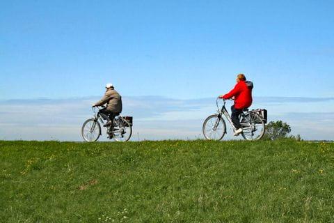 Radfahrer in Zeeland