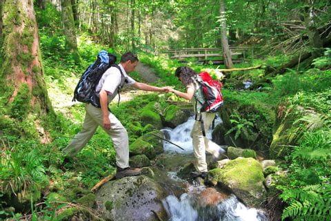 Beruhigender Bach im Schwarzwald