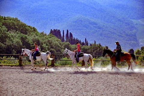 Übungen am Reitplatz in der Toskana