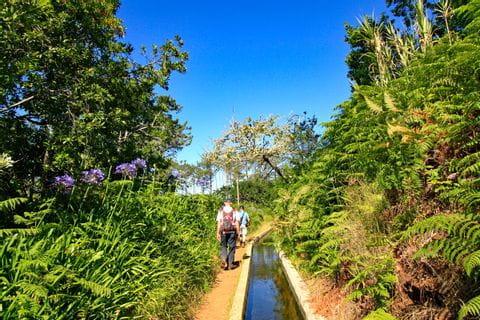 Wandern in der Gruppe entlang Levada Pfaden auf Madeira