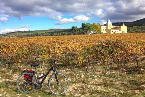 Rad vor Weingut