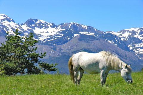 Trekking in der Bergwelt Bulgariens