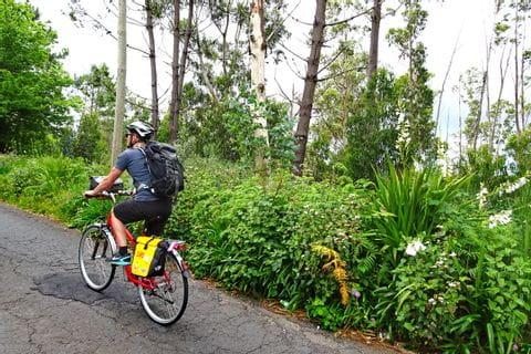 Radfahrer vor üppig grüner Vegetation kurz nach Camacha