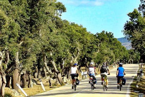 Gruppe radelt am Radweg durch die Landschaft in Sardinien