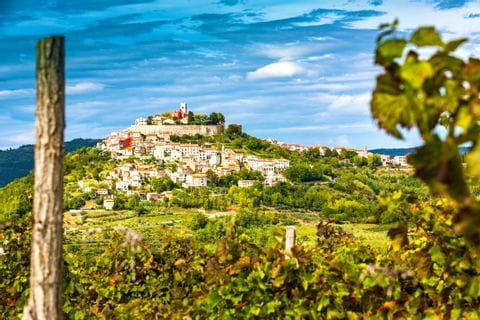 Wandern mit Blick auf Motovun in Istrien