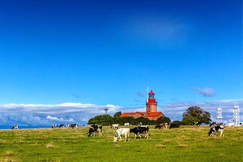 Blick auf den Leuchtturm in Kuehlungsborn