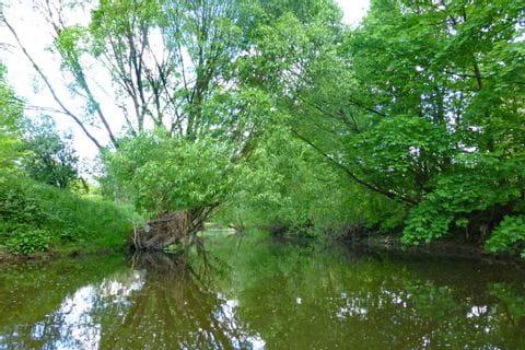 Die Flusslandschaft im Altmühltal