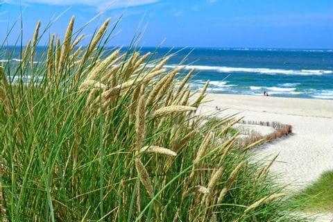 Blick auf den Strand auf Sylt