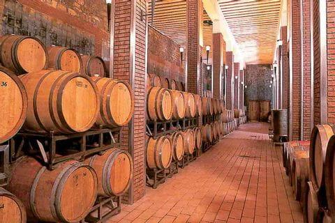 Besuch eines Weinkellers beim Wandern in Istrien