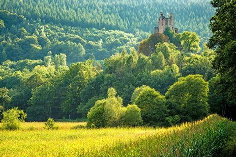 Panoramablick auf Burg Ramstein